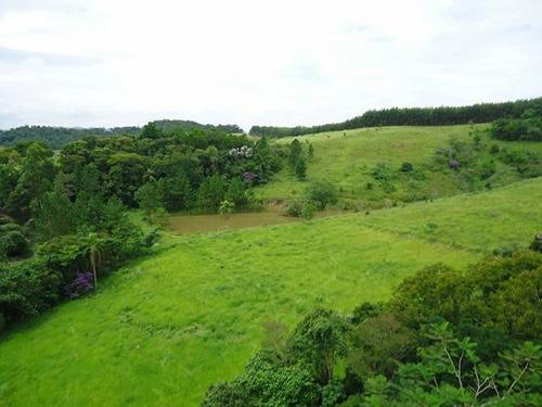 terrenos excelentes,bem localizado,o mais barato da região!