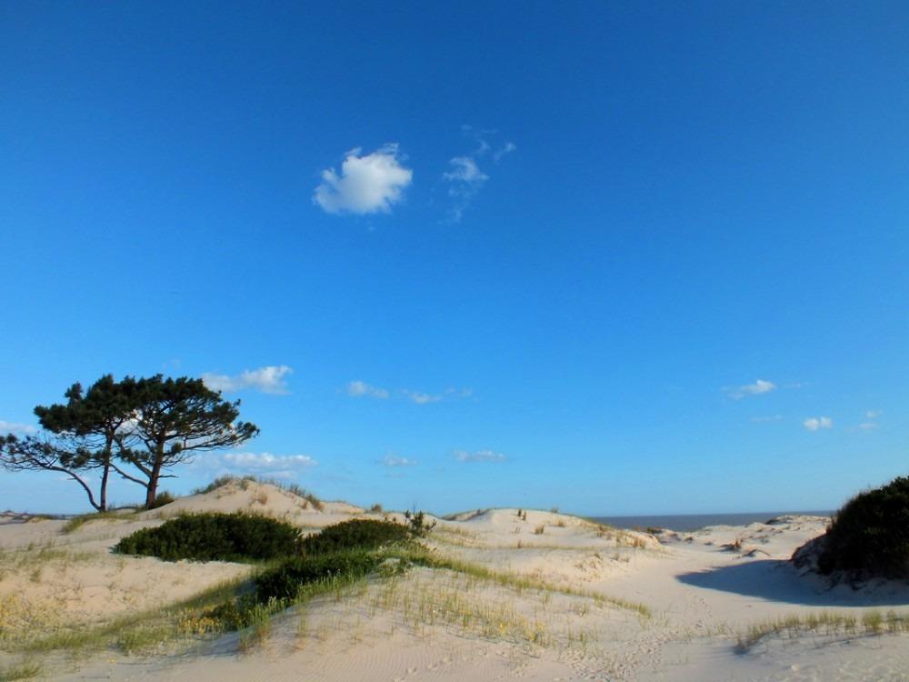 terrenos frente al mar