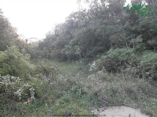 terrenos na praia à venda  em itanhaem/sp - compre o seu terrenos na praia aqui! - 1133290