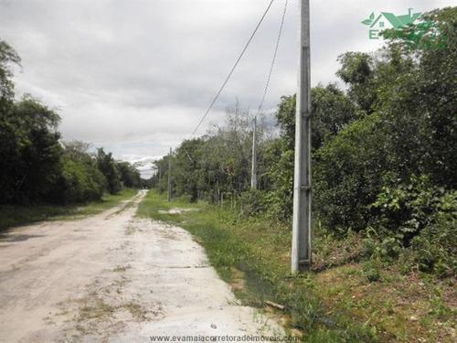 terrenos na praia à venda  em itanhaem/sp - compre o seu terrenos na praia aqui! - 1153649