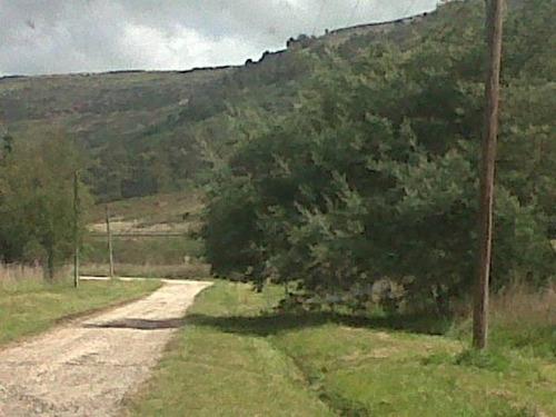 terrenos o lotes venta colinas verdes