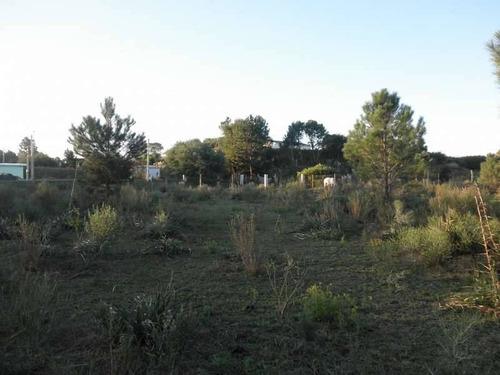 terrenos o lotes venta colonia
