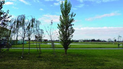 terrenos o lotes venta los troncos