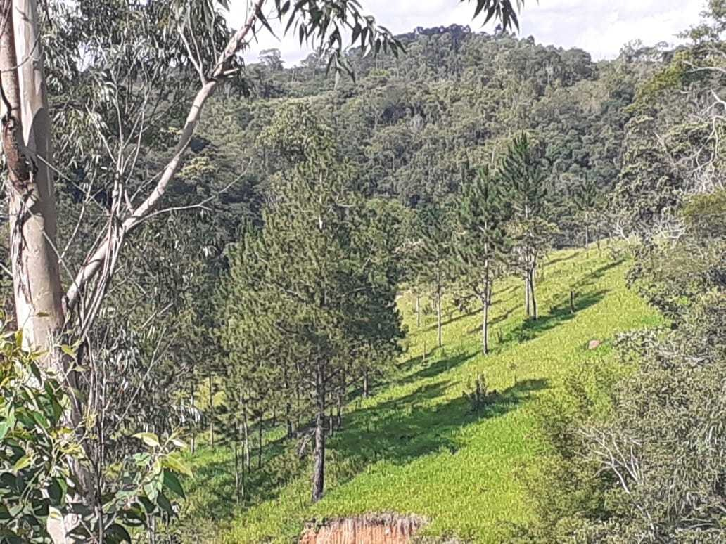 terrenos para construção de chácara