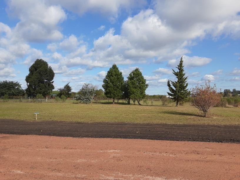 terrenos paysandu