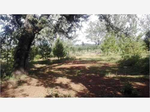 terrenos propiedad terreno venta