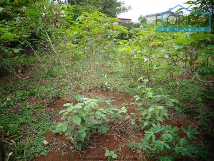 terrenos à venda  em atibaia/sp - compre o seu terrenos aqui! - 1391933