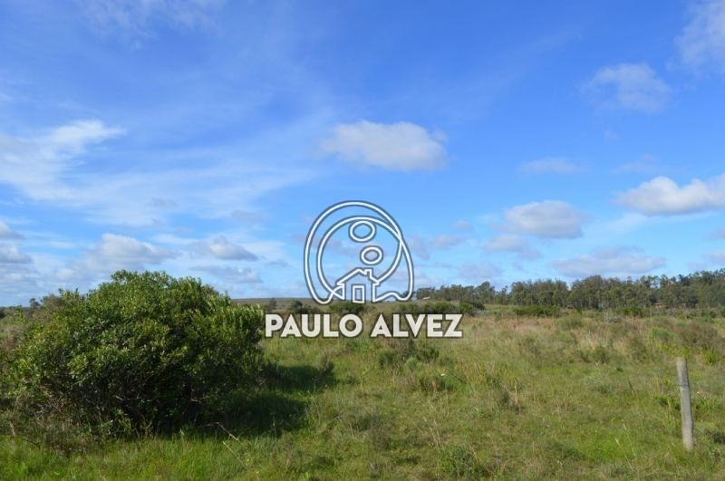 terrenos-venta-punta-colorada-te434