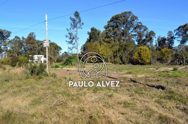 terrenos-venta-punta-colorada-te478