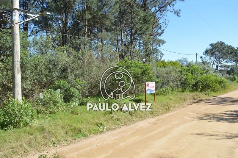 terrenos-venta-punta-colorada-te585