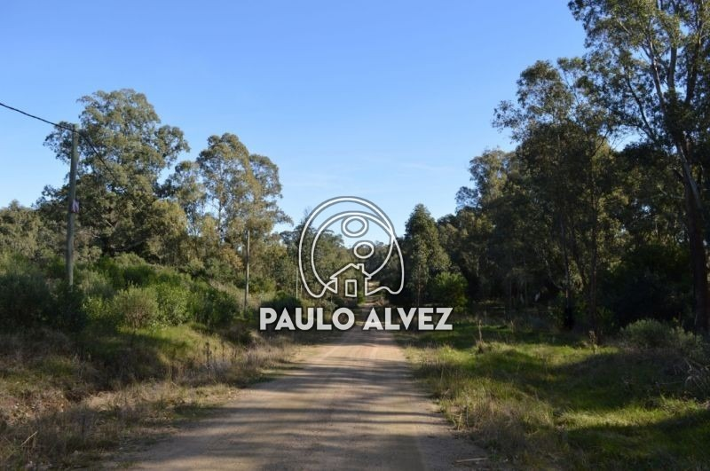 terrenos-venta-punta-colorada-te873