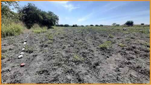 terrenos xoxocotla