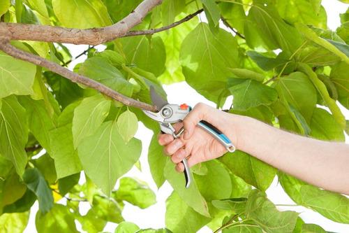 tesoura de poda gardena 25 mm 8905 lâmina inferior em aço inoxidável cabo reforçado em alumínio