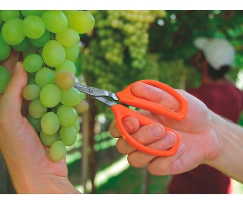 tesoura para frutas profissional 78311051 tramontina