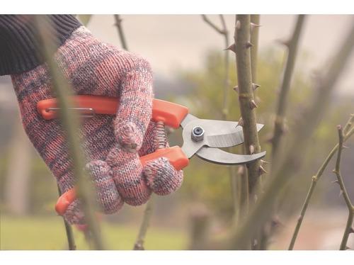 tesoura poda jardinagem