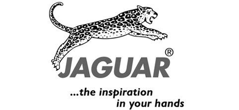 193be8d7a Tesouras Jaguar Jay2 Fio Navalha 5.5 Ou 6.0 Polegadas - R$ 129,90 em ...