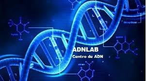 test de adn, estudio de paternidad o maternidad. adnlab.