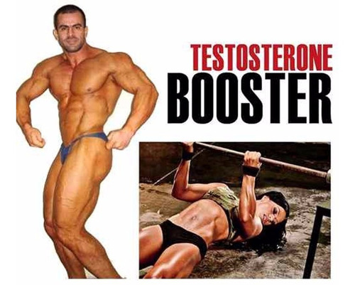 test hardcore testosterone booster + músculos 240 caps usa
