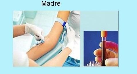 test prenatal de paternidad. estudio de adn en el embarazo