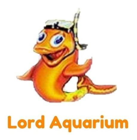 teste aquário água