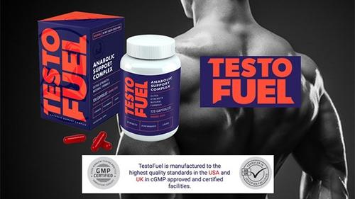 testofuel precursor de testosterona original