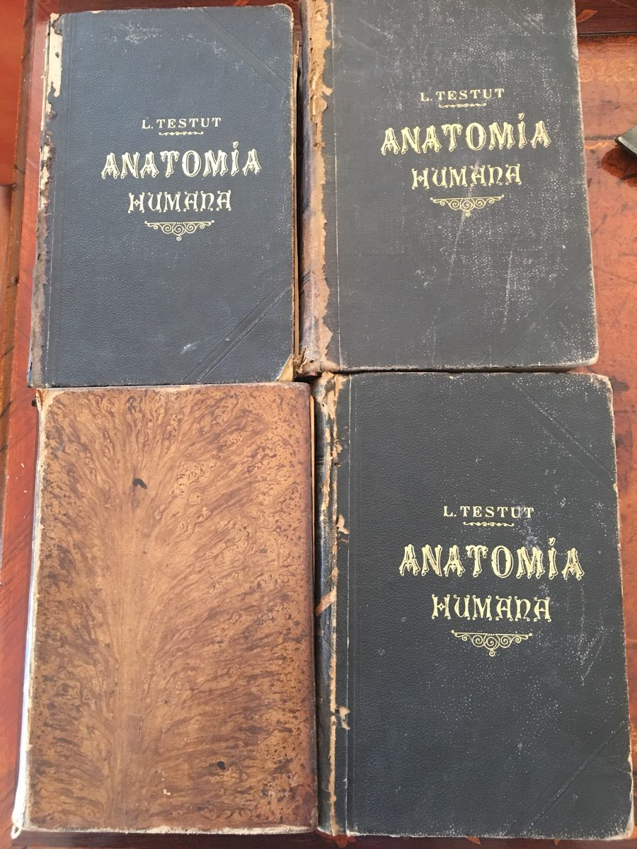 Testut. Tratado De Anatomía Humana. Quinta Edición - $ 1.700,00 en ...