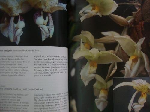 the astonishing stanhopeas livro orquídeas gênero stanhopea