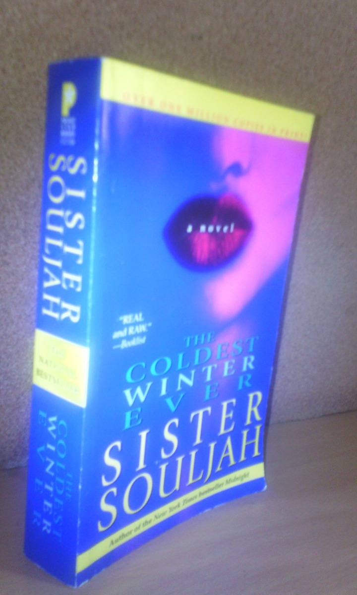 Coldest Winter Ever Book
