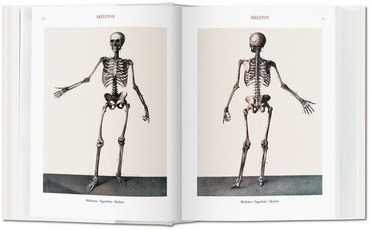 the complete atlas of human anatomy and surgery. atlas de an