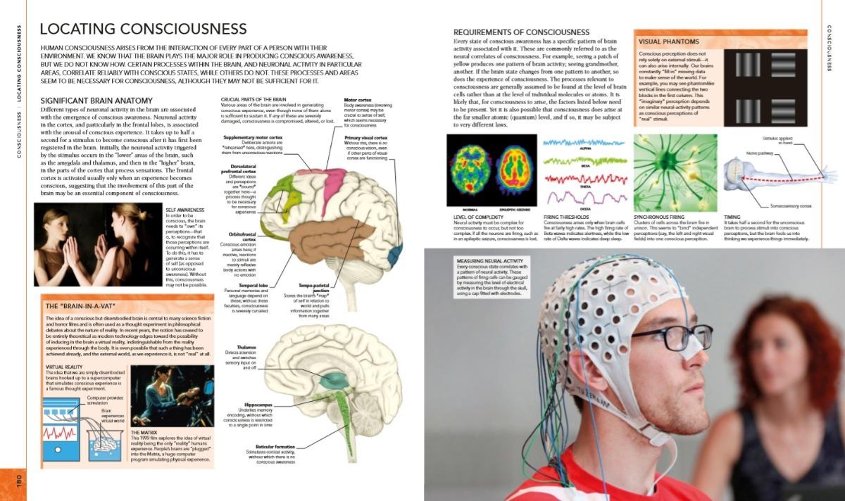 The Human Brain Book 2019 New Edition Pdf Inglés