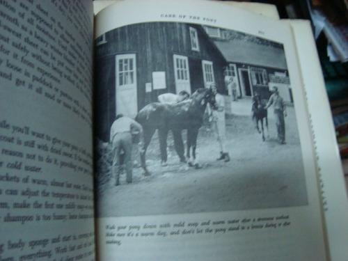 the pony book / jeff griffen- herrick
