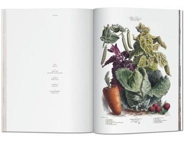 the vegetable garden- jardin vegetal - vilmorin, album