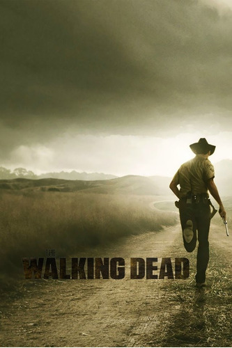 the walking dead 10 temporadas completas digital español