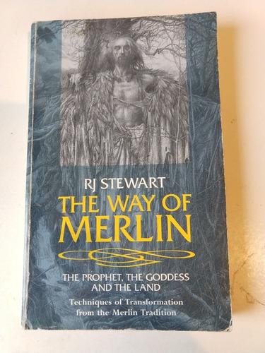 the way of merlin r j stewart
