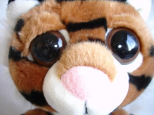 tierno tigre tigresito
