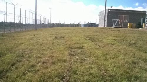 tierra negra camion  cesped en rollos sistemas de riego
