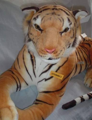 Tigre De Bengala Gigante De Largo 2 En
