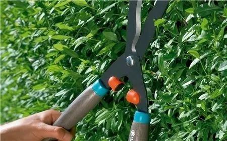tijera de podar c/ mango madera gardena classic clipper 540