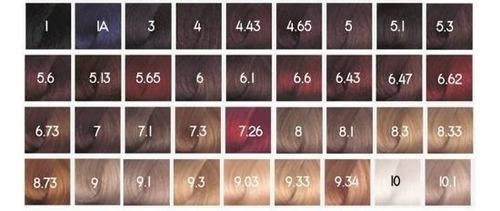 tintura coloracion+ activador+ keratina issue color x 6 kits