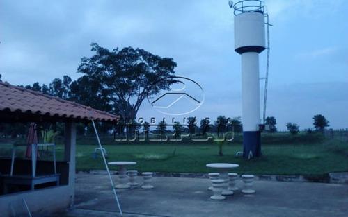 tipo: sitio     cidade: balsamo - sp     bairro: rural
