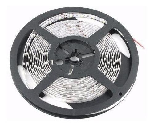 tira led 5050 interior blanco frio calido 5mts alta potencia