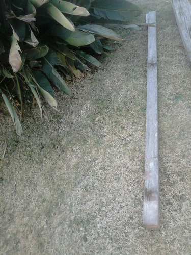 tirante pino brasil antiguo 5 x 5 cns
