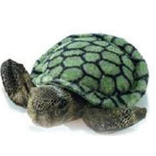 titere tortuga shelly