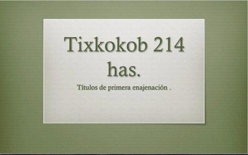 tixkokob 214 has primera enajenacion $12m2 o $25mil por ha en renta