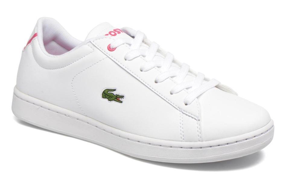 33303ab3104 Tênis Feminino Lacoste Carnaby -rosa Original Na Caixa N° 35 - R ...