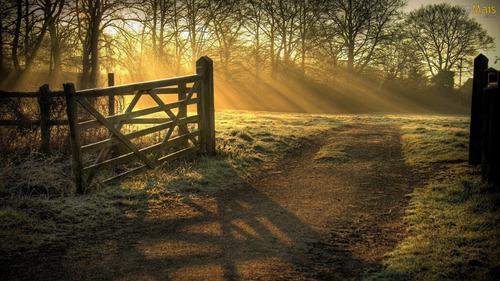 todas as manhãs acordar com uma vista maravilhosa!!!ab