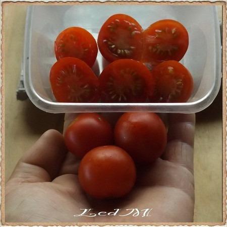 tomate mini, 30 semillas