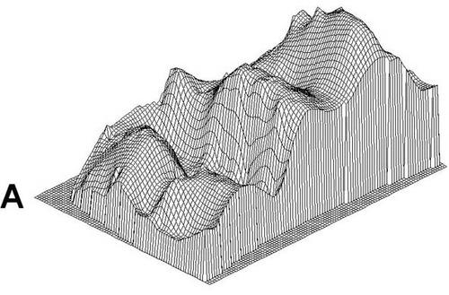 topografía - topógrafo - servicios topográficos venezuela
