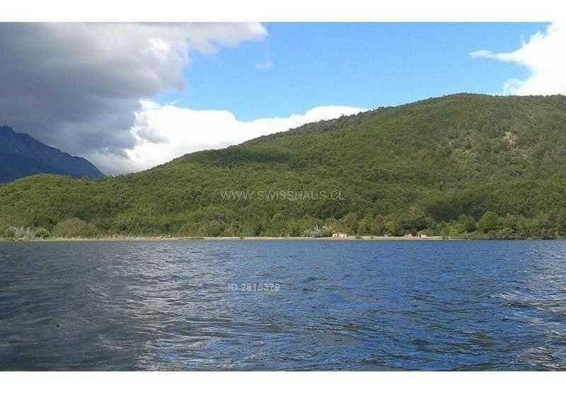torres del paine - lago brush