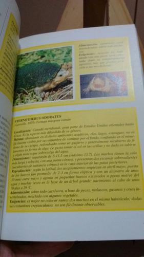tortugas terrestres y acuáticas